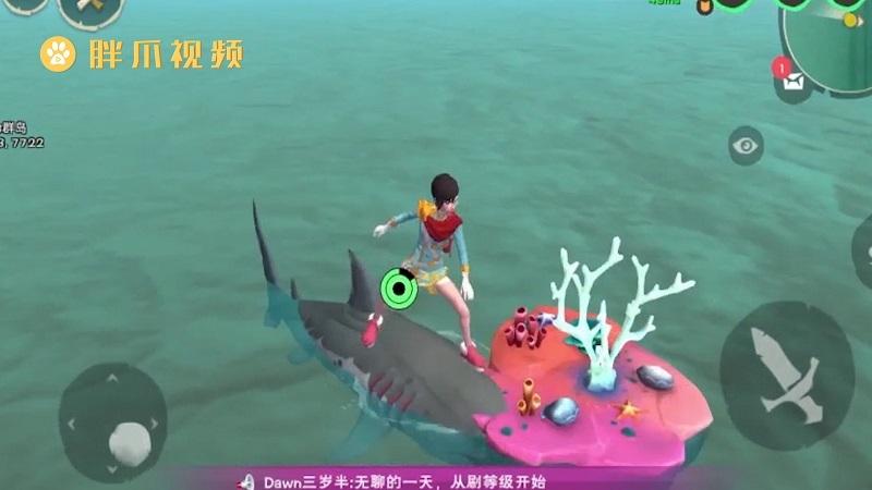 创造与魔法珊瑚多久刷新一次(1)