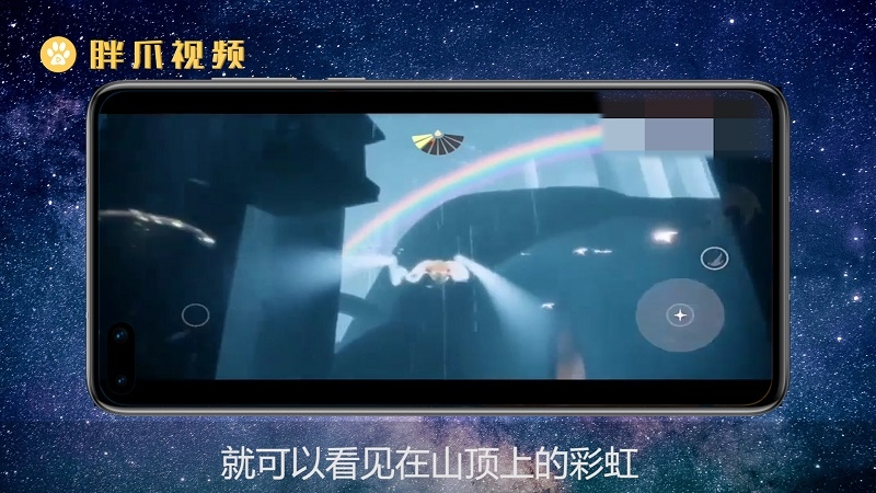 雨林的彩虹在哪(3)