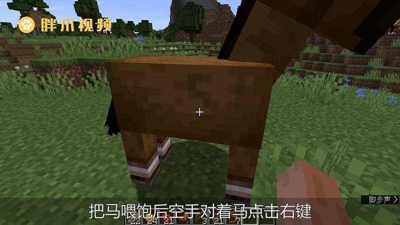 我的世界怎么驯服马(2)