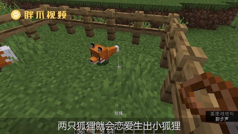 我的世界狐狸吃什么才能驯服(3)