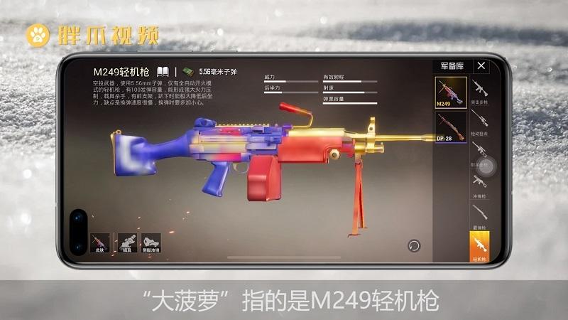 和平精英大菠萝什么枪(1)