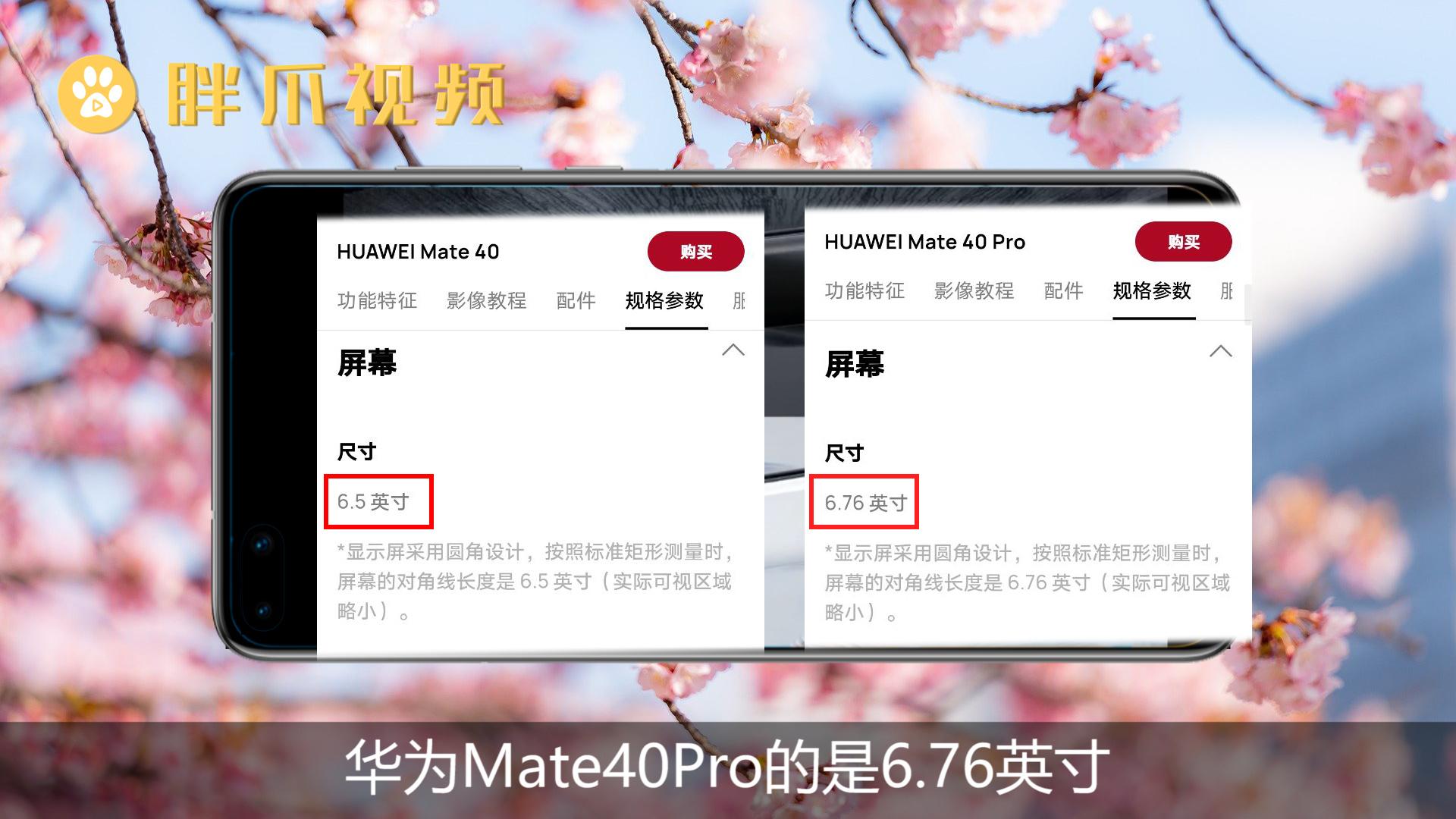 mate40和mate40pro区别(1)