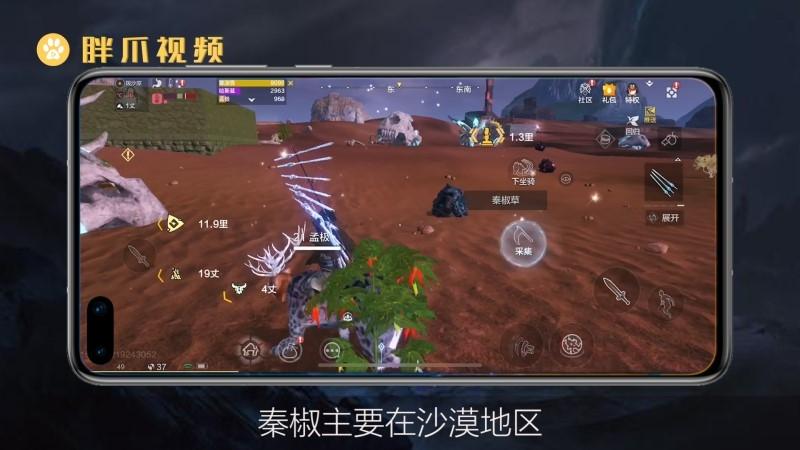 妄想山海香辣红韶肉汤配方(3)