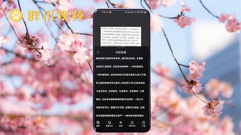 小米手机扫描功能在哪里(3)