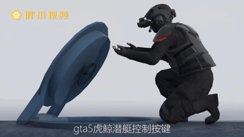 gta5虎鲸怎么开(1)