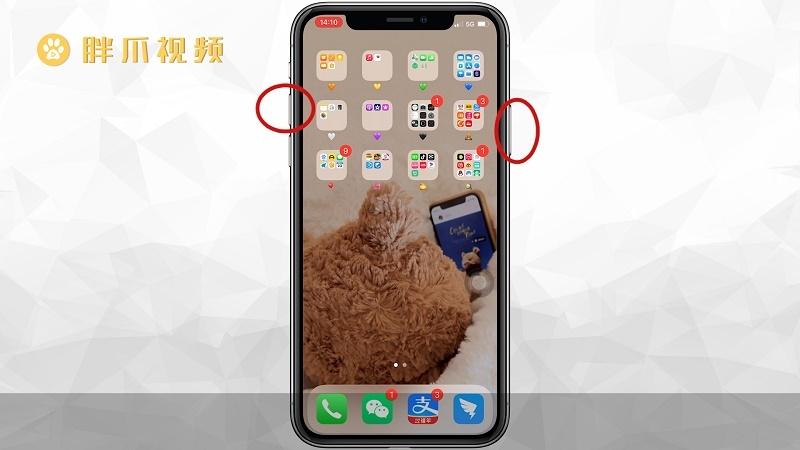 苹果12怎么截图(2)
