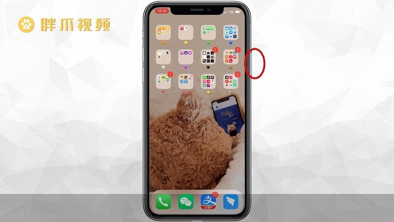 苹果手机死机怎么强制重启(3)