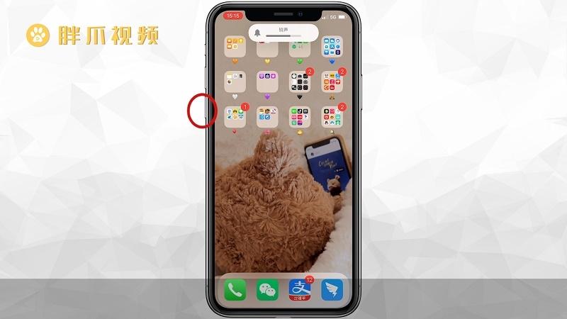 苹果手机死机怎么强制重启(2)