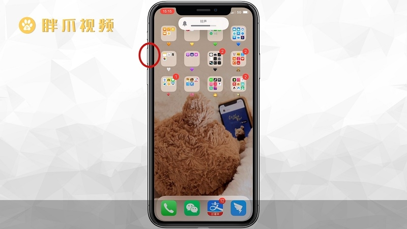 苹果手机死机怎么强制重启(1)