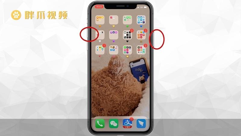 苹果12怎么重启手机(2)