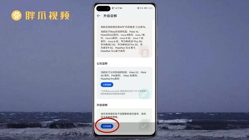 华为手机怎样安装鸿蒙系统(4)