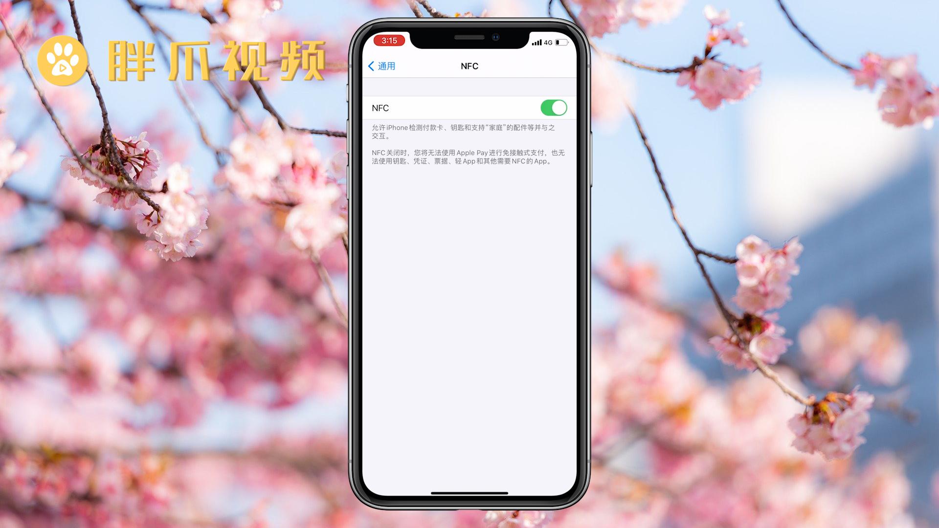 苹果手机nfc功能怎么用(3)